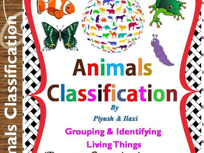 Image of: Specimen Collection Animals Classification Whole Animal Kingdom With Worksheets By Ilaxippatel Teaching Resources Tes Tes Animals Classification Whole Animal Kingdom With Worksheets By