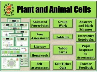 Plant and Animal Cells-Structure, Differences and ...