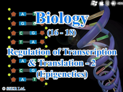3.8.2.2 Regulation of Transcription & Translation - 2  (Epigenetics)