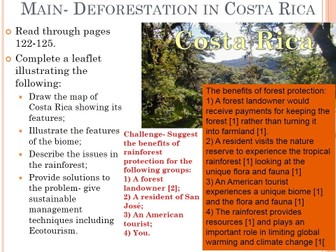 Rainforest Bundle