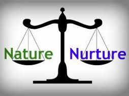 Nature nurture debate in clinical psychology by mandarmstrong teaching resources - Nurture images download ...