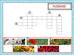 Picture Puzzle Crosswords