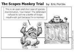 John Scope trial (Monkey Trial) - IGCSE