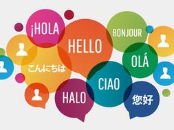 MFL French / Spanish Classroom Board Display Posters