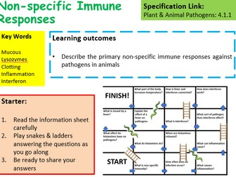 New OCR A Level Biology Non-Specific Immune Responses Lesson