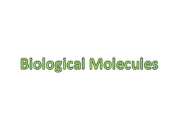 Biolgical Molecules