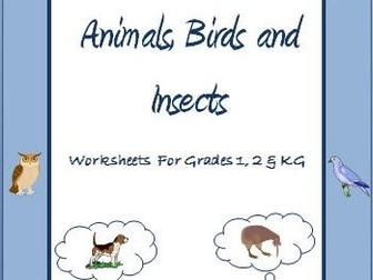 Science Worksheets Bundle for Grade 1 and 2 by Ritureddi - Teaching ...