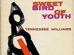 sweet bird of youth tennessee williams