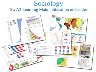 Education & Gender [SOCIOLOGY] (Data, Graphs, Infographics) [5 x A3 Learning Mats, Research Task]