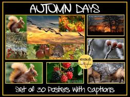 Autumn Display Posters