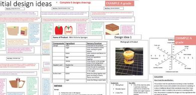 GCSE Food controlled assessment – Initial ideas EXEMPLARS