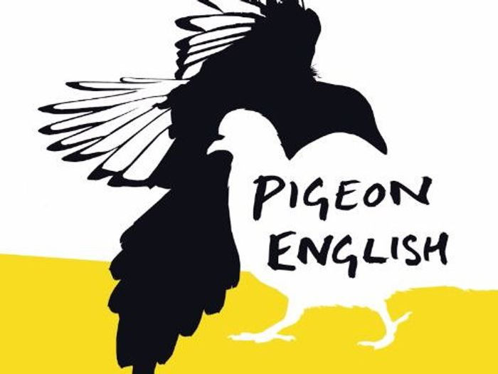 Pigeon English Pdf