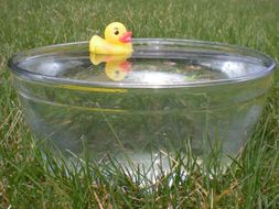 2 Science activities- float or sink, magnetic and not magnetic for SEN, Early Years and Primary