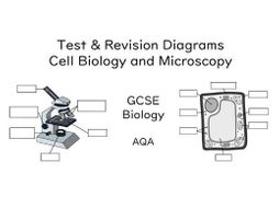 Diagrams Cell Biology GCSE (AQA) | Teaching Resources