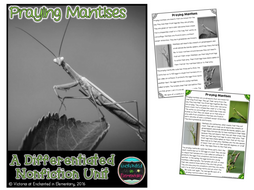 Differentiated Nonfiction Unit: Praying Mantises