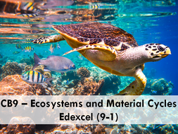 CB9 Edexcel (9-1) - Ecosystem and Material Cycles