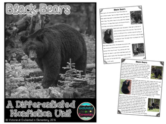 Differentiated Nonfiction Unit: Black Bears
