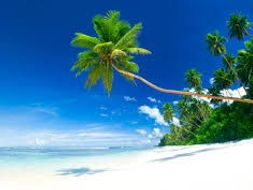 Descriptive Writing Describe A Beach Scene Lower Ability Ks3 Or Ks4