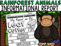 ANIMAL REPORT RAINFOREST ANIMALS INFORMATIVE WRITING RESEARCH