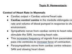 Edexcel A Level Biology Topic 9 Homeostasis