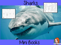 Learn About Sharks Mini Book